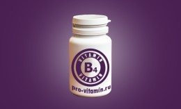 Витамин B4 (Холин)